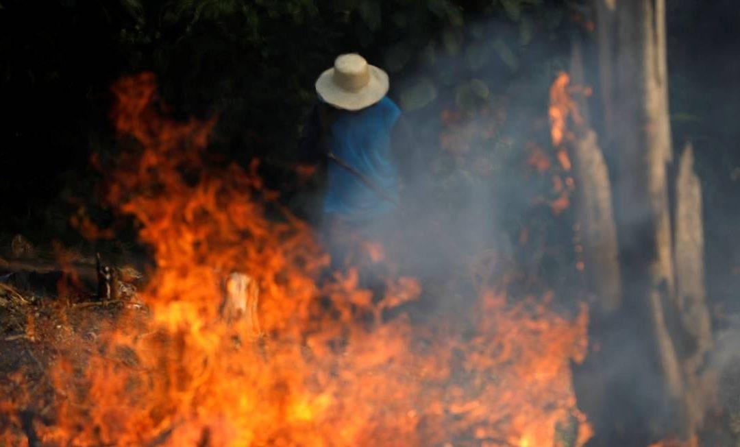 Queimar a Amazônia é crime contra a humanidade – NOTA VIA CAMPESINA